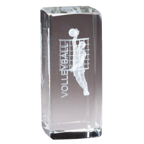 Optical Crystal 3D Rectangle Men's Volleyball Award